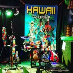 Hawaii Toy Boys i Varberg. Coverband afterbeach